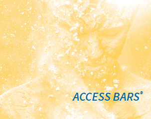 Teilnehmerstimmen: Access Bars